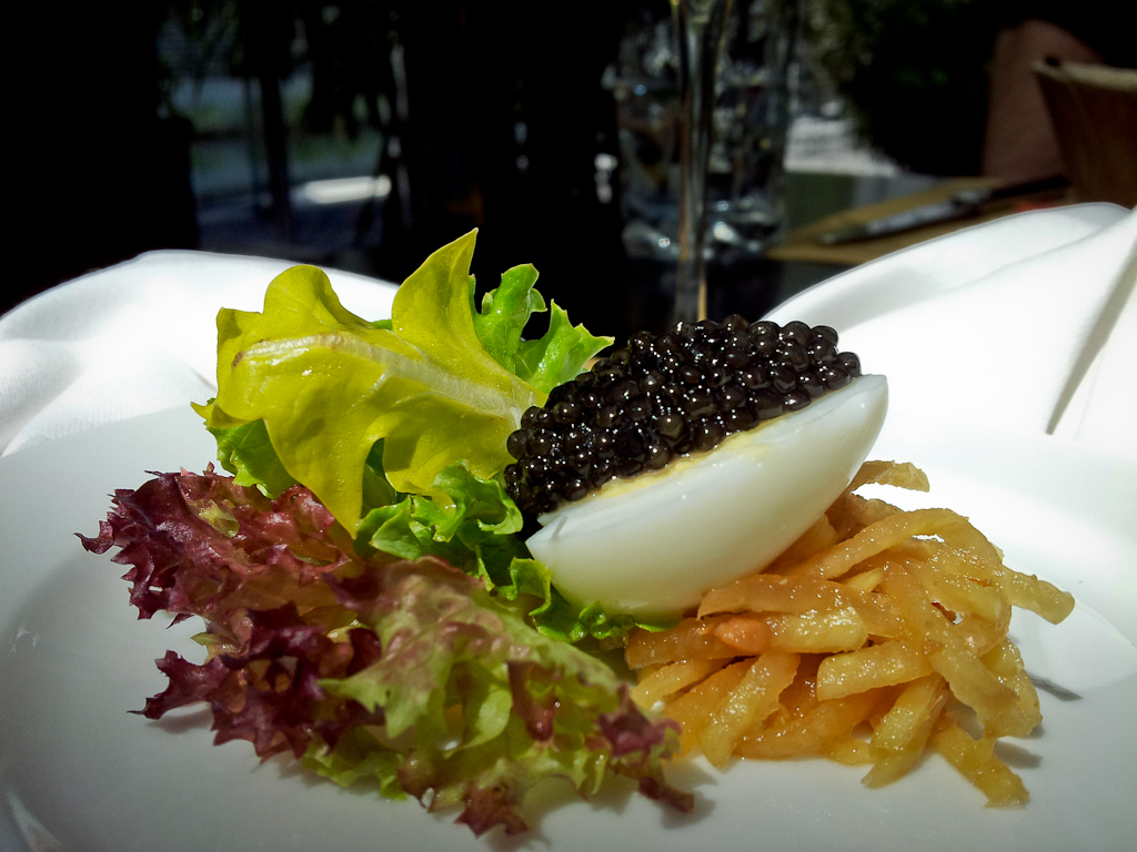 Swiss Tropics Home to Oona Caviar