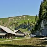Farm Homes in Aelggi