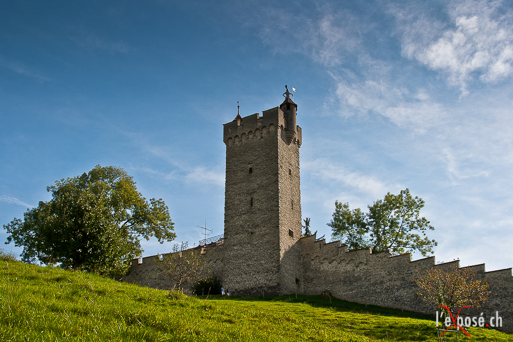 Medieval Wall and Tower