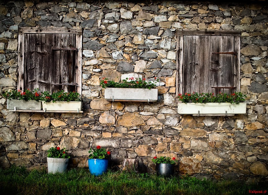 Flowers Decorate a Barn House